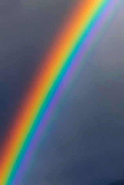 Look for the rainbow in the storm